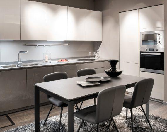 Monochrome grey and white kitchen interior